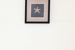 Framed Star Fish   13.5W x 13.5H